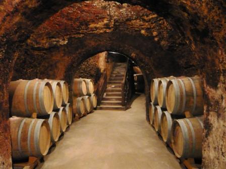 Wine Tour Madrid Cave